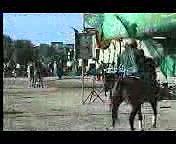 دانلود تصویری تعزیه ی حضرت عباس (ع) - مشایخی و رسول خدابخش