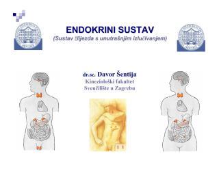 endokrini.pdf